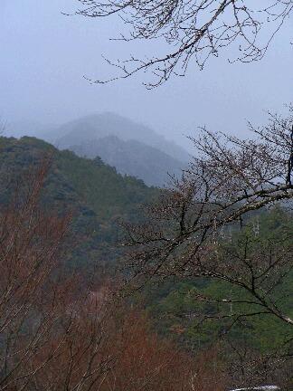 201209kasagi3.JPG